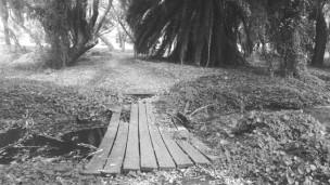 Perth's Secret Garden